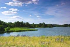 Le fleuve une belle vue Images libres de droits