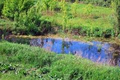 Le fleuve Vistule Images stock