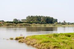 Le fleuve Yangtze et l'herbe verte Photographie stock