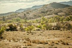 Le Flinders s'étend Australie image stock