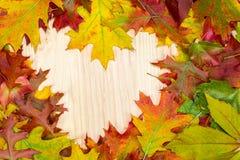 Le foglie autunnali si trovano nella forma del cuore sui bordi di legno Immagini Stock