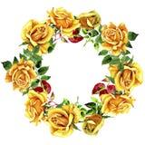 Le foglie della rosa si avvolgono in uno stile dell'acquerello Fotografia Stock