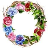 Le foglie della rosa si avvolgono in uno stile dell'acquerello Immagine Stock Libera da Diritti