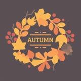 Le foglie di autunno avvolgono l'illustrazione piana Immagini Stock