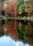 Le foglie di autunno brillantemente variopinte hanno riflesso in un lago Fotografia Stock