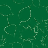 Le foglie di autunno sono estratte con gesso sulla lavagna nera Fotografia Stock