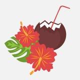 Le foglie di palma ed il fiore tropicali Hawai dell'ibisco dei fiori con la noce di cocco bevono, fondo esotico del fiore dell'es Fotografia Stock