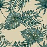 Le foglie di palma tropicali, giungla lascia a vettore senza cuciture il fondo floreale del modello royalty illustrazione gratis