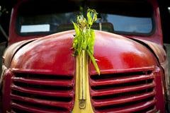 Le foglie fortunate sul camion Fotografia Stock Libera da Diritti