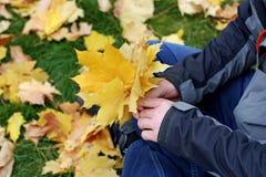 Le foglie nelle mani degli uomini Immagini Stock