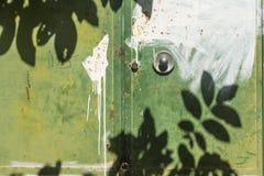 Le foglie ombreggiano sulla porta di colore verde Fotografia Stock Libera da Diritti