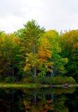 Le foglie variopinte di caduta hanno riflesso in uno stagno dell'acqua calma e scura; paesaggio Fotografia Stock