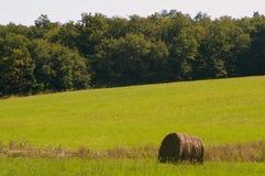Le foin a recueilli dans les domaines au-dessous des bois dans la région rurale d'Indre, Frances photo libre de droits