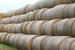 Le foin roule dans KnävÃ¥ngen, Falsterbo, Suède Images stock