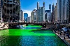 Le folle si riuniscono intorno al Chicago River poichè è verde tinto fotografia stock libera da diritti