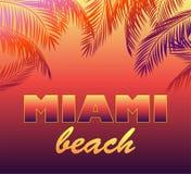 Le fond au néon avec le lettrage de Miami Beach et les silhouettes de palmettes pour le T-shirt, l'affiche de partie de nuit et a illustration stock