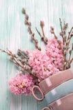 Le fond avec les jacinthes et le saule fleurit sur le woode de turquoise photos stock