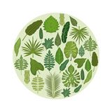 Le fond blanc avec le cadre circulaire avec le vert décoratif part à l'intérieur illustration stock