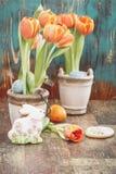 le fond a coloré le vecteur rouge de tulipe de format des oeufs de pâques eps8 Image stock