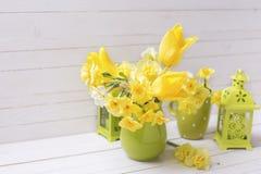 le fond a coloré le vecteur rouge de tulipe de format des oeufs de pâques eps8 Image libre de droits