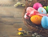 le fond a coloré le vecteur rouge de tulipe de format des oeufs de pâques eps8 Les beaux oeufs colorés dans le nid avec le ressor Image libre de droits