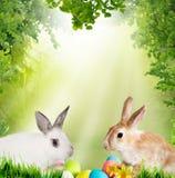 le fond a coloré le vecteur rouge de tulipe de format des oeufs de pâques eps8 Petits lapin et oeufs de pâques mignons Images stock