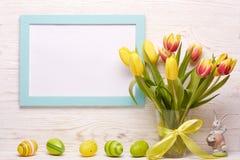 le fond a coloré le vecteur rouge de tulipe de format des oeufs de pâques eps8 Photos stock