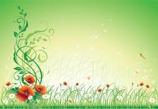 le fond colore la fleur sensible Photos libres de droits