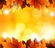 Le fond d'automne avec des feuilles et l'espace vide pour vous conçoivent Photographie stock