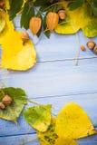 Le fond d'automne laisse la table de bleu de fruits Image stock