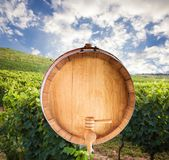 Le fond d'un baril de vin sur un fond blanc photographie stock libre de droits