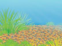 Le fond d'une mer tropicale illustration de vecteur