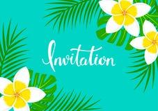 Le fond de carte de voeux avec le plumeria exotique tropical de frangipani fleurit, illustration de vecteur