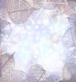 Le fond de fête d'hiver des lumières de bokeh avec le cadre de la gelée part illustration stock