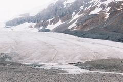 Le fond de glacier d'Athabasca Photo stock