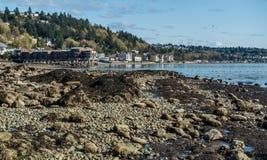 Le fond de la mer a indiqué 2 photos libres de droits