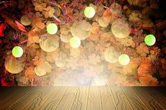 Le fond de la trinité pousse des feuilles pour le jour du ` s de StPatrick, Photographie stock libre de droits