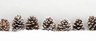 Le fond de lumière de Noël a des cônes Photographie stock libre de droits