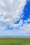 Le fond de nature de mer d'herbe verte opacifie et ciel Image libre de droits