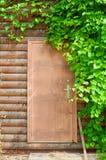 Le fond de nature du raisin part d'encadrer la porte brune en bois photos stock