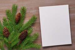 Le fond de Noël a amorcé le carton, branches impeccables, cônes dessus Photo stock