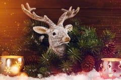 Le fond de Noël avec des cerfs communs dirigent la décoration dans des lumières d'éclat Images stock