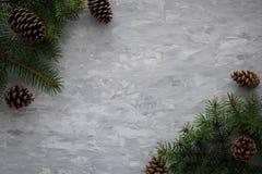 Le fond de Noël avec le sapin s'embranche, cône de pin sur la table concrète grise Vue supérieure, configuration plate Copyspace photographie stock