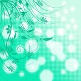 Le fond de turquoise avec le blanc a brouillé le bokeh et les longues branches bouclées avec des feuilles et des fleurs Photo stock