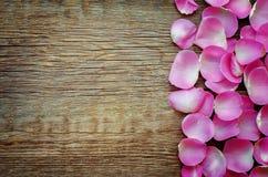 Le fond de Valentine avec des pétales de rose Images libres de droits