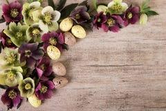 Le fond de vintage de Pâques avec le ressort fleurit l'espace de copie de couleur en pastel, fond rustique Photographie stock