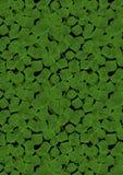 Le fond du dispersé poussent des feuilles aléatoirement trèfle Photos stock