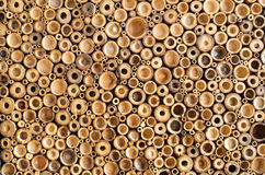 Fond en bois de coupe Image stock