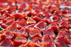 Le fond en gros plan des tomates rouges découpe le séchage en tranches dehors au soleil Images stock