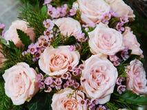 Le fond fleuri de roses colorées, se ferment  Image stock